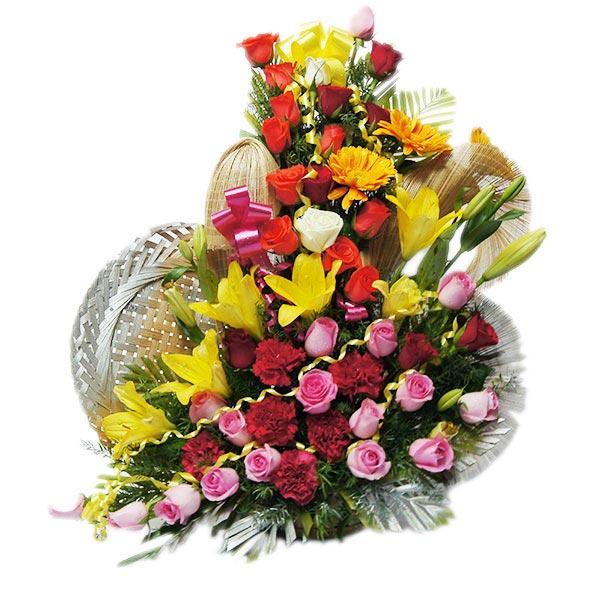 Flowery Euphoria