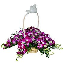 Basket-full-of-Orchids