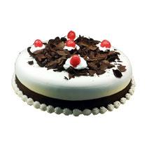 Black Forest Haven Cake