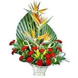 Carnations Posy