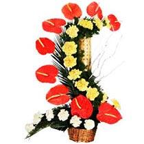 Flowery Appeal