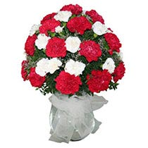 Vase full of carnations